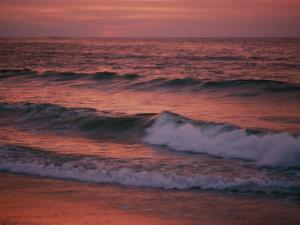 The Rising Sun Creates Beautiful Colors on the Waves by Bill Curtsinger