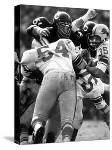 Football: Chicago Bears Dick Butkus No.51 in Action Vs Detroit Lions by Bill Eppridge