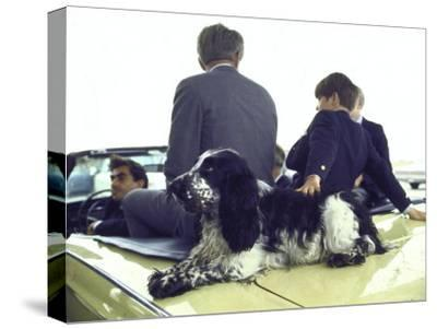 Presidential Contender Bobby Kennedy with Sons and Pet Dog Freckles in Convertible During Campaign