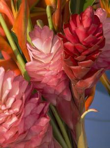 Colorful Tropical Flowers at Farmers Market Waimea Bay, Hawaii by Bill Hatcher