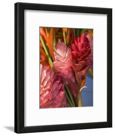 Colorful Tropical Flowers at Farmers Market Waimea Bay, Hawaii