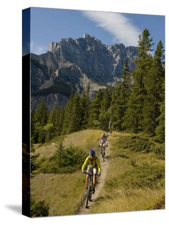 Mountain Biking on a Single Track Trail in the Canadian Rockies