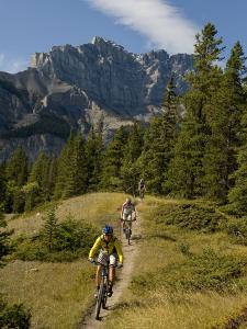 Mountain Biking on a Single Track Trail in the Canadian Rockies by Bill Hatcher