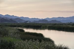 Rio Hardy, a River Tributary in the Colorado River Delta by Bill Hatcher