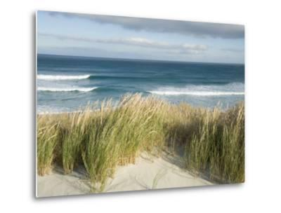 Scenic Hillside of the Beach and Grasses on the Pacific Ocean
