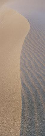 Wind Patterns in the Sand
