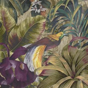 Golden Bird of Paradise by Bill Jackson