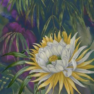 Night Bloom by Bill Jackson