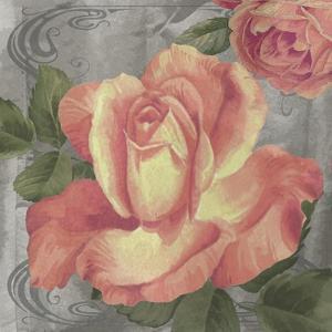 Nouveau Orange Rose by Bill Jackson