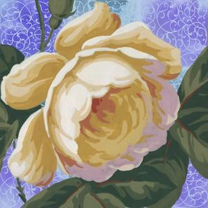 Summer Ombre Rose Yellow by Bill Jackson