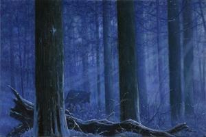 Blue Wolf by Bill Makinson