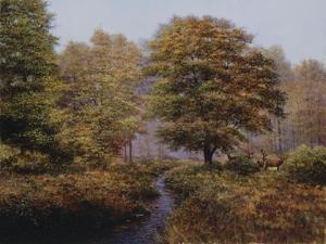 Forest Herd by Bill Makinson