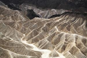 Dune Pathway by Bill Philip