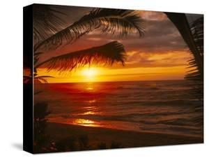 Sunset on the Ocean with Palm Trees, Oahu, HI by Bill Romerhaus
