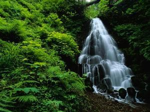 Fairy Falls by Bill Ross