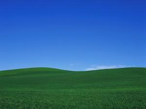 Green Hills by Bill Ross