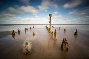 Spurn Point, Spurn Head, Groynes, Yorkshire, England, United Kingdom, Europe by Bill Ward