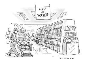 Little Dutch boy at supermarket holds his finger against a bottle, in the ? - New Yorker Cartoon by Bill Woodman