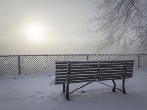 Canada, Ottawa, Ottawa River. Fog-Shrouded Winter Scene by Bill Young
