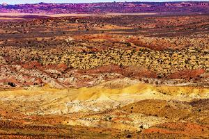 Painted Desert Yellow Grass Lands Orange Sandstone Red Fiery Furnace Arches National Park Moab Utah by BILLPERRY
