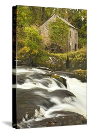 Cenarth Waterfalls, Carmarthenshire, Wales, United Kingdom, Europe