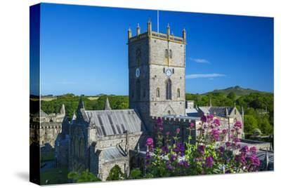 St. Davids Cathedral, Pembrokeshire, Wales, United Kingdom