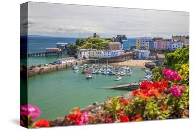 Tenby, Pembrokeshire, Wales, United Kingdom, Europe