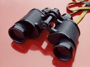 Binoculars with Reflection