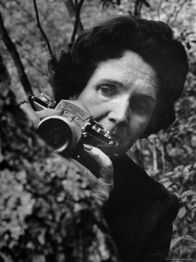 Biologist/Author Rachel Carson Holding Her German Kine Exakta Camera in the Woods Near Her Home-Alfred Eisenstaedt-Premium Photographic Print