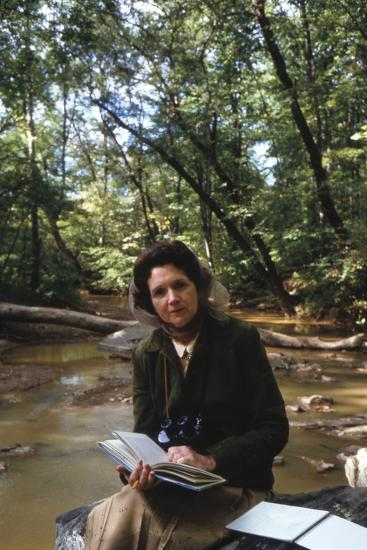 Biologist-Author Rachel Carson Reading in the Woods Near Her Home, 1962-Alfred Eisenstaedt-Photographic Print