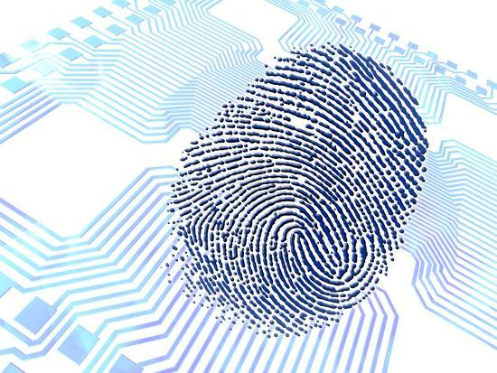 Biometric Fingerprint Scan, Artwork-PASIEKA-Photographic Print