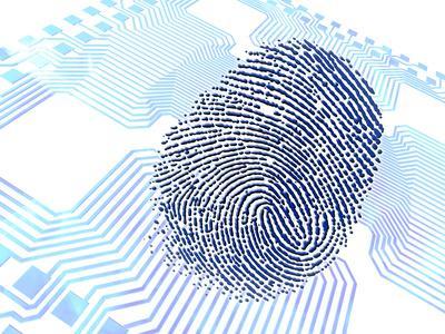 https://imgc.artprintimages.com/img/print/biometric-fingerprint-scan-artwork_u-l-pzjiou0.jpg?p=0