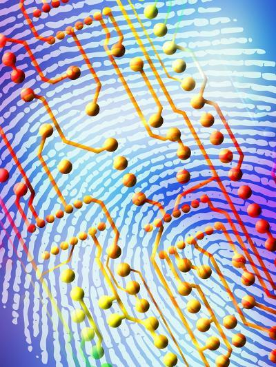 Biometric Fingerprint Scan-PASIEKA-Photographic Print