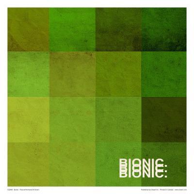 https://imgc.artprintimages.com/img/print/bionic_u-l-f4y2jb0.jpg?p=0