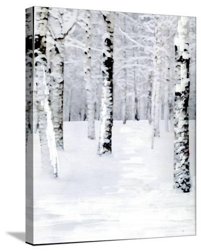 Birch Forest Path-Parker Greenfield-Stretched Canvas Print