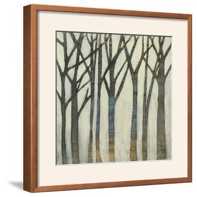Birch Line I-Jennifer Goldberger-Framed Photographic Print