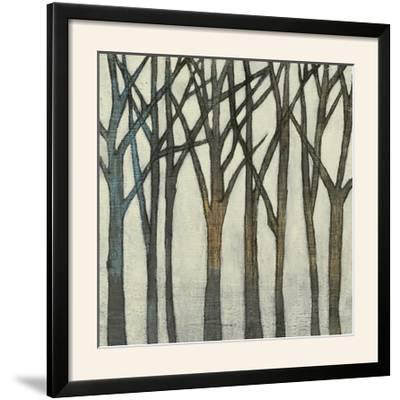 Birch Line II-Jennifer Goldberger-Framed Photographic Print