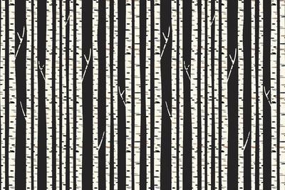 https://imgc.artprintimages.com/img/print/birch-trees_u-l-q12vej20.jpg?p=0
