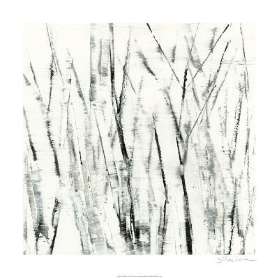 Birches I-Sharon Gordon-Limited Edition