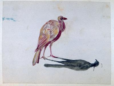 Bird, 1820-1876-George Sand-Giclee Print