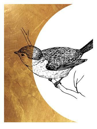 https://imgc.artprintimages.com/img/print/bird-4_u-l-f8f7f50.jpg?p=0
