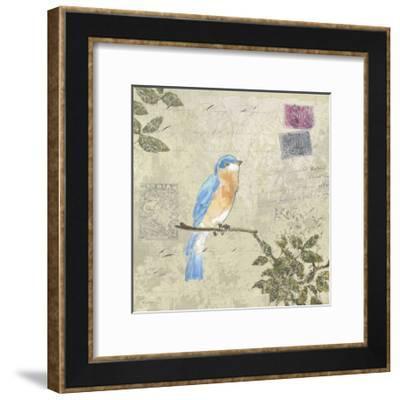 Bird and Postage I-Rick Novak-Framed Art Print