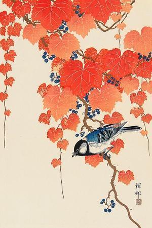 https://imgc.artprintimages.com/img/print/bird-and-red-ivy_u-l-pnaa4y0.jpg?p=0