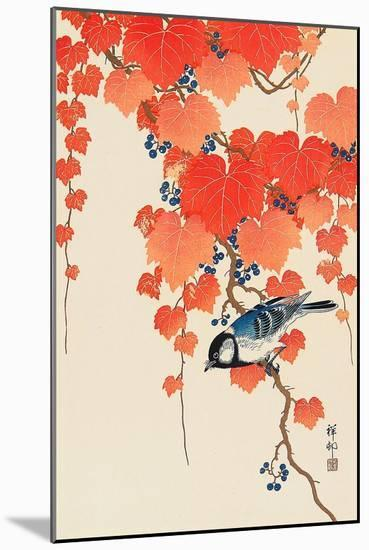 Bird and Red Ivy-Koson Ohara-Mounted Giclee Print