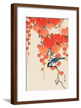 Bird and Red Ivy-Koson Ohara-Framed Giclee Print