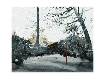 Bird Box, Ohlsdorf Cemetery, 2013-Calum McClure-Giclee Print