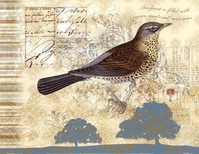 https://imgc.artprintimages.com/img/print/bird-brained-iii_u-l-f8k2m50.jpg?p=0