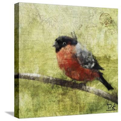 Bird Buddy I-Kay Daichi-Stretched Canvas Print