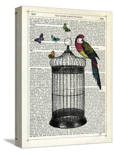 Bird Cage and Parrot-Marion Mcconaghie-Stretched Canvas Print