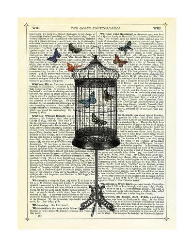 Bird Cage & Butterflies-Marion Mcconaghie-Art Print